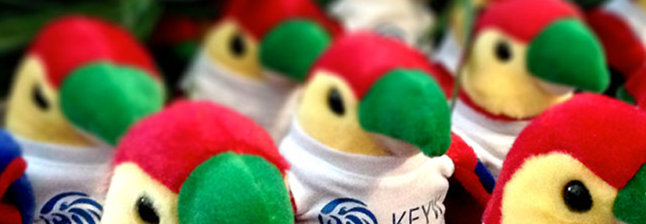 Keyw Holdings Banner Image