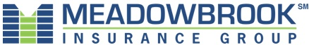 Meadowbrook Insurance Group Inc. Logo Image