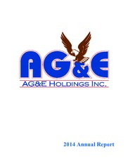 AG&E Holdings Inc.